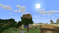 Minecraft server pics