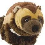 skunkbear
